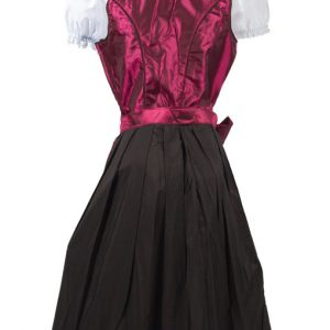 Classic Maroon Dirndl Dress Product back